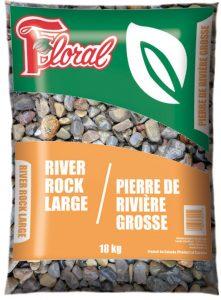 Pierre de rivière grosse - Floral